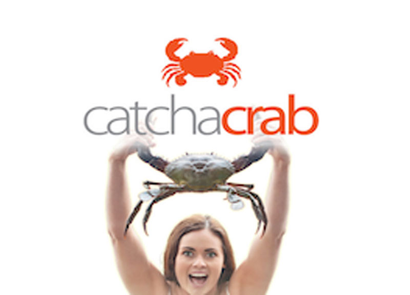 how to catch snow crabs